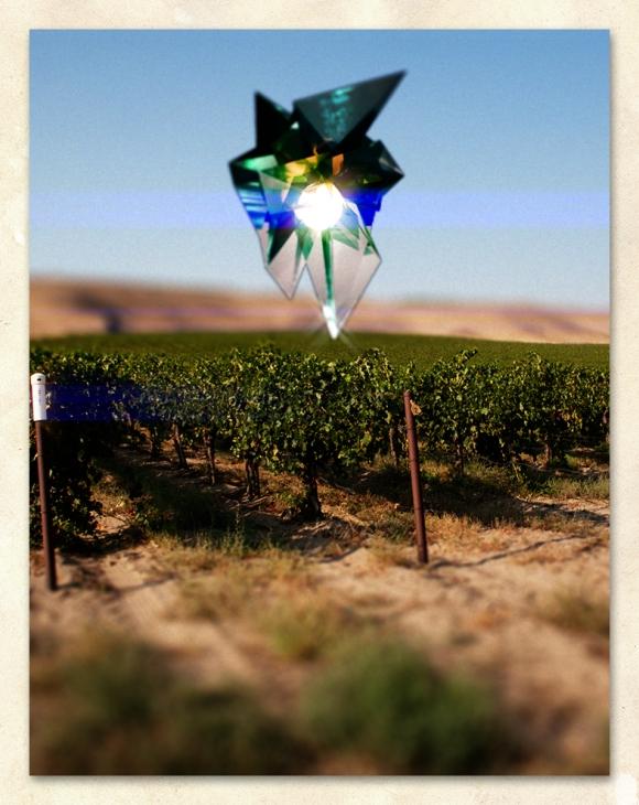 Vineyard Aliens
